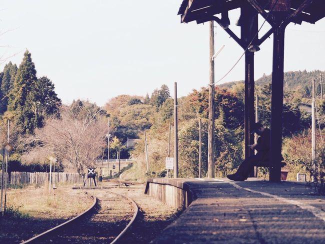 小湊鉄道 いすみ鉄道 上総中野 Tree The Way Forward Clear Sky Day Outdoors Nature Scenics Station Station Platform Beauty In Nature Sky