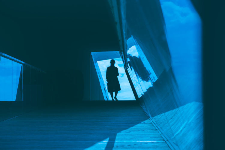Silhouette of a woman walking underneath the architectural masterpiece In Amsterdam, the Eye film museum The Architect - 2018 EyeEm Awards Architecture Blue Building Built Structure Day Full Length Glass - Material Indoors  Leisure Activity Lifestyles Men One Person Real People Staircase Standing Transparent Walking Window