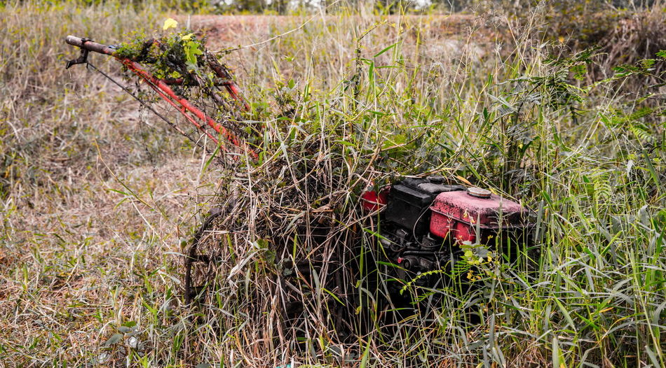 Old Engine Grass Plant Nature Land Day Field Growth Outdoors People Lying Down High Angle View Landscape Selective Focus Military Environment Weapon Animal Wildlife Gardening Old Engine