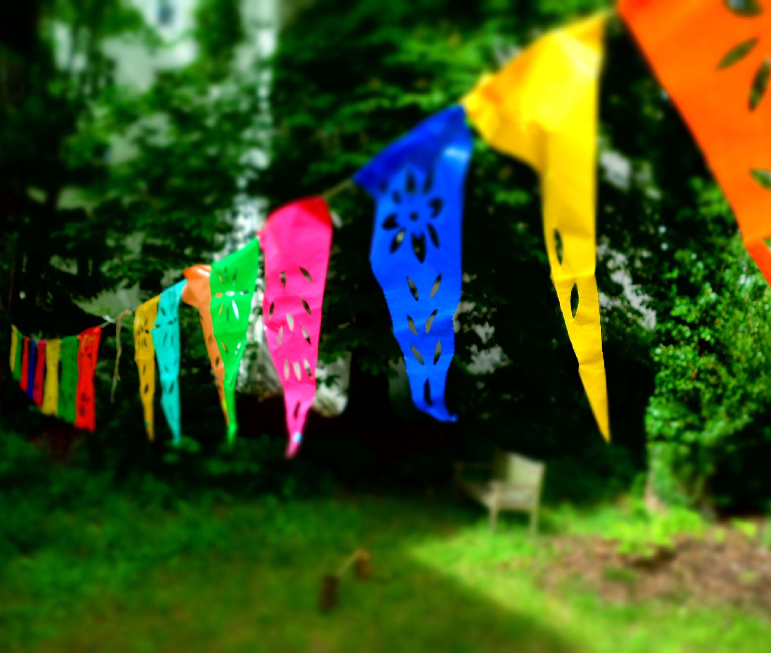 multi colored, hanging, clothesline, in a row, clothespin, outdoors, bunting, celebration, no people, day, grass, close-up
