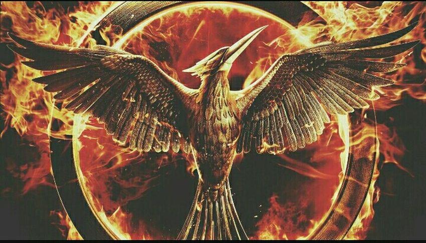 Mockingjay Rebelion Ourleadermockinjay Courage Strong Katniss 💪