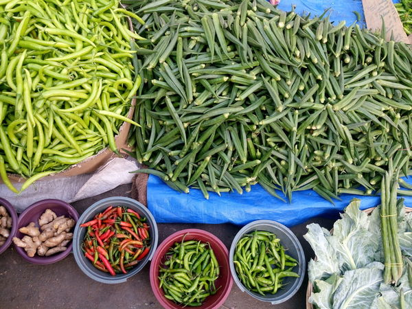 Vegetable market Abundance Arrangement Backgrounds Choice Close Up Close-up Collection Container Creativity Directly Above Food And Drink Full Frame High Angle View Large Group Of Objects No People Retail  Sale Variation Vegetable Vegetable Market
