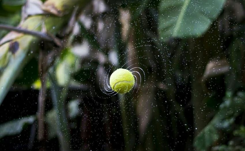 Water Spider Web Spined Ball