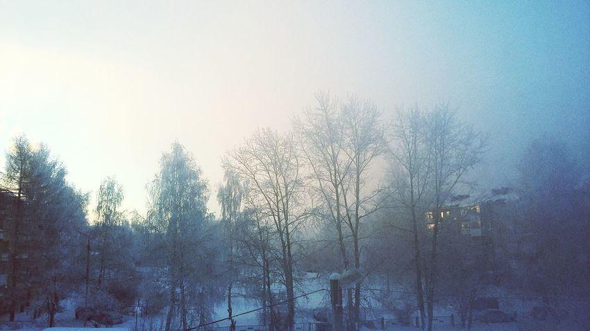 Winter Russian Nature