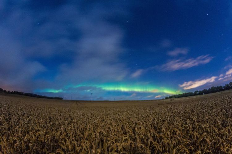 Outdoors Green Color Tranquil Scene Sunset Landscape Nature Beauty In Nature No People Cloud - Sky Water Sea Rural Scene Scenics Horizon Over Water Tranquility Wave Agriculture Northern Lights Scotland Field Fish-eye Lens Aurora Borealis Day Beach Blue