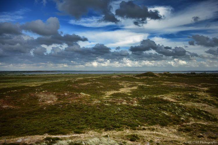 Denmark Denmark 🇩🇰 Landscape Landscape_Collection EyeEm Masterclass EyeEm Nature Lover Nature_collection Nature Nature_collection Filsø, Denmark Dunescape Cloudporn Sand Dune Summer Sky
