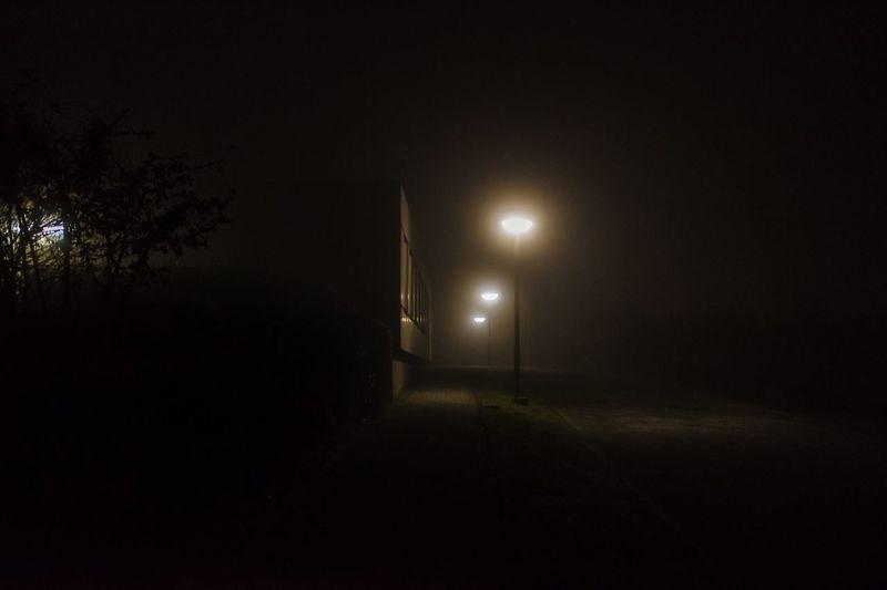 Be. Ready. Illuminated Night Lighting Equipment Dark No People Winter Tree Electricity  Nature Indoors  Sky