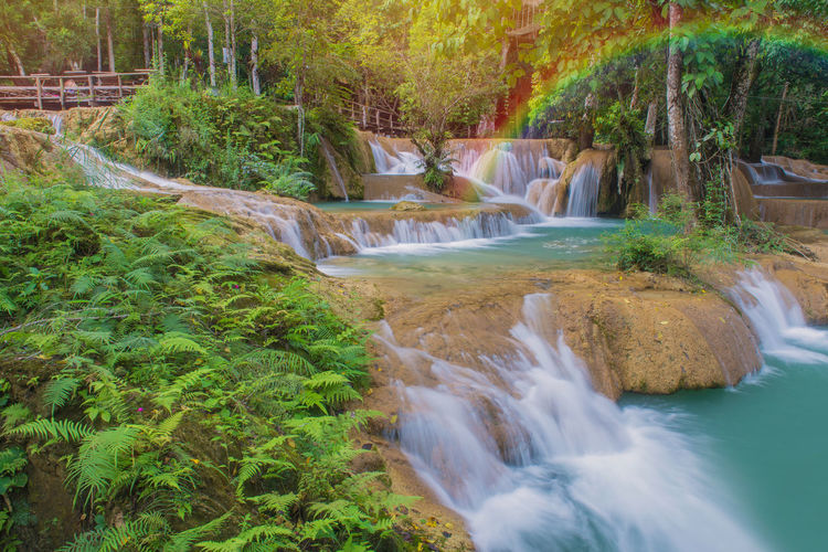 Water Scenics - Nature Tree Plant Beauty In Nature Motion Long Exposure Forest Waterfall Flowing Water Nature River Flowing Land No People Blurred Motion Environment Rock Solid Outdoors Stream - Flowing Water Rainforest Power In Nature Falling Water