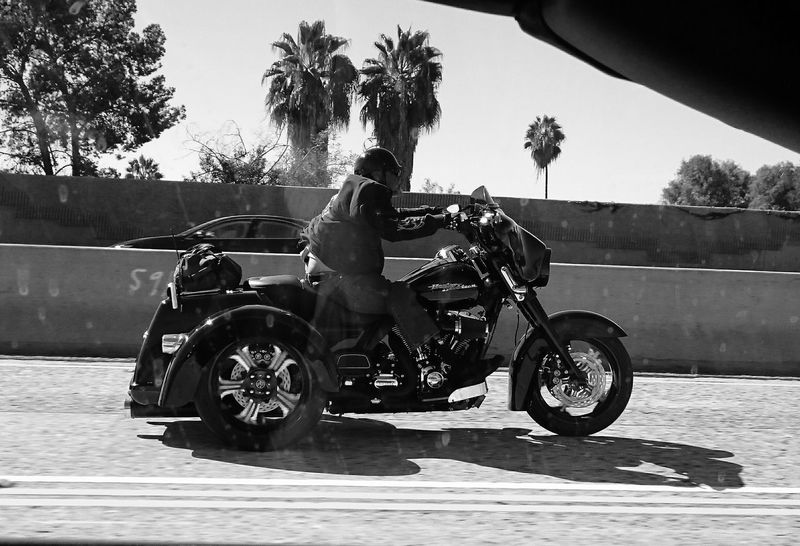 Adult Biker Clear Sky Day Full Length Leisure Activity Lifestyles Men Motorcycle Nature Outdoors Palm Tree People Real People Rear View Riding Road Shadow Sky Sunlight Togetherness Transportation Tree Two People Women