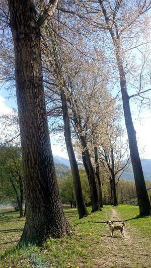 Showcase April yumi Terlago Lago Di Terlago Terlago Bike
