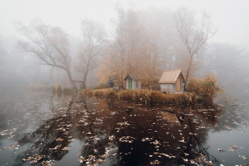 Fairy lake Autumn Trees Cold Temperature Fishing Cabin Fog Foggy Lake Leaves Mood No People Outdoors Refelections Tree Water