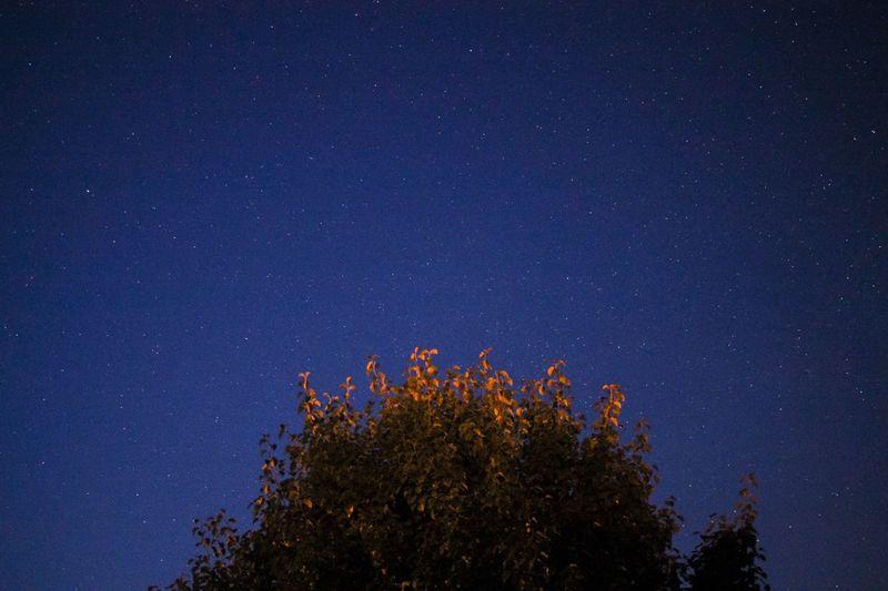 Redux Star -