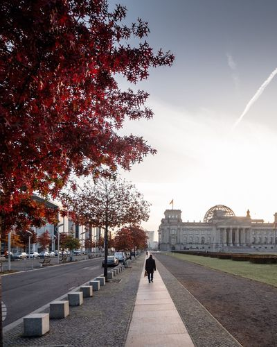 Structures of Power / Berlin Reichstag Tree Architecture Built Structure Outdoors Day Real People Autumn Travel Destinations Building Exterior Sky Women Full Length One Person Nature Adult People Berlin Photography Reichstag Bundestag Regierungsviertel