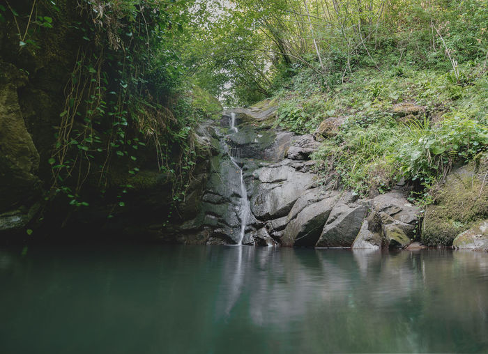 Village matkhoji Water Forest Tree Land Nature Environment Plant Tranquility Growth Foliage Beauty In Nature River Lush Foliage No People Tranquil Scene Outdoors Rock Landscape Scenics - Nature WoodLand Flowing Water