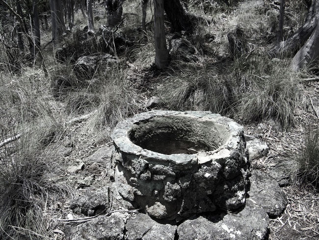 """Ok anyone seen """"The Ring"""" yeah??? Look at that Well and wonder why I wanted to walk on as fast as I could :-P Black And White With A Hint Of Colour Close-up Day No People Outdoors The Ring Water Well Imagination Black And White Landscape Black And White Photography Nature Makes Me Smile Creativity Everywhere My Life My Adventure Photography Everywhere Growth Low Angle View Outdoors Photograpghy  Australian Landscape"""