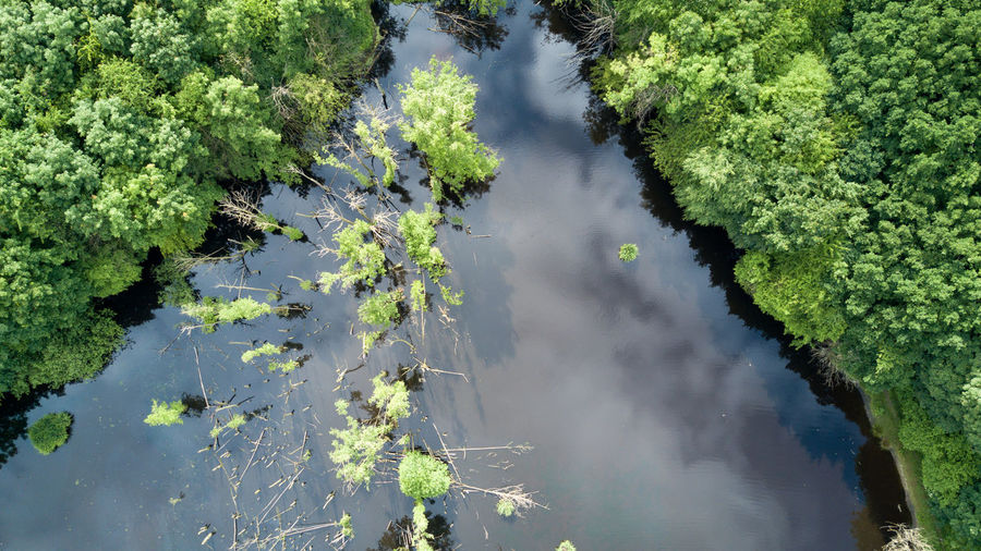 High angle view of river amidst trees against sky