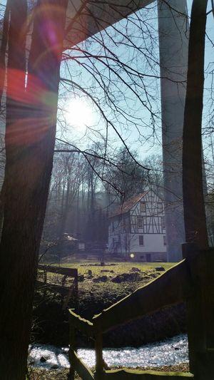 Spaziergang in der Wintersonne walk in the winter sun in un paso disfrutado el sol de invierno Sunrise Sunday Afternoon Light And Shadow