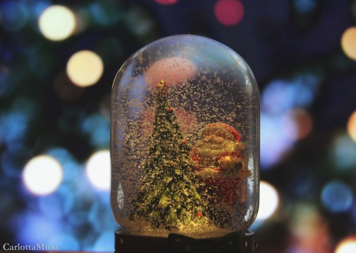 Merry Christmas Focus On Foreground Close-up Illuminated No People Indoors  Day Sfondo Christmas Decoration Luci Di Natale Pallá  Foto Neve Cold Natale  BabboNatale Present Inverno 2016 Bambini  Foto Tumblr Amore Snow Fotografia -CM