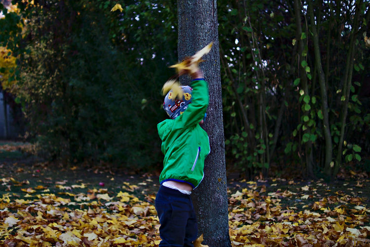 Boy throwing leaves in forest during winter