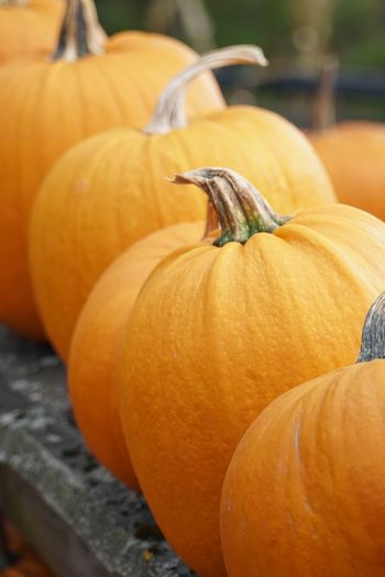 Pumpkin Food And Drink Food Orange Color Vegetable Healthy Eating No People Focus On Foreground Halloween Wellbeing Close-up Day Still Life Celebration For Sale Outdoors Freshness Autumn Market Plant Stem
