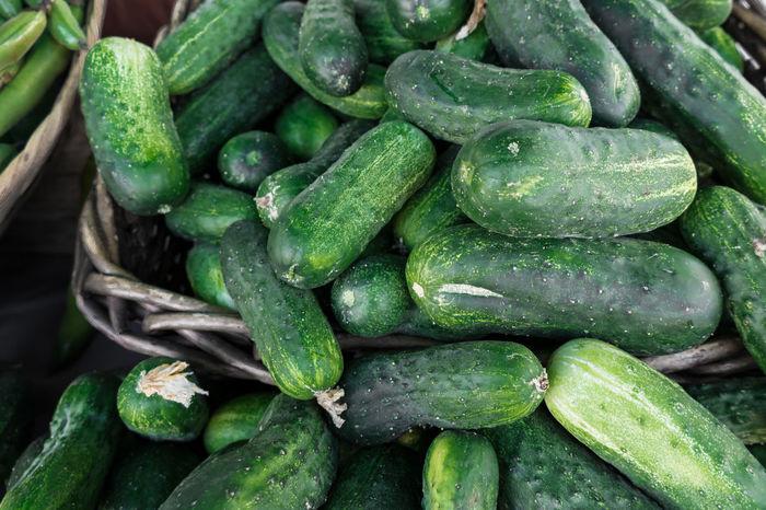Cucumber Cucumbers Farmers Market Freshness Travel Photography Abundance Farmstand Food Food And Drink Foodporn Fresh Freshness Green Color Healthy Eating Market Organic Organic Food Pickling Cucumbers Raw Food Vegetable Vegetables