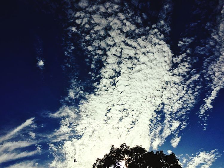 Sky Map Sky And Clouds Sunset #sun #clouds #skylovers #sky #nature #beautifulinnature #naturalbeauty #photography #landscape Big Clouds Dramatic Sky Colour Photography Documenrary Photography Seascape Skyscape