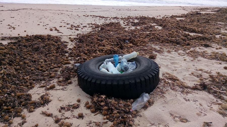 Tire And Bottles At Dirty Beach
