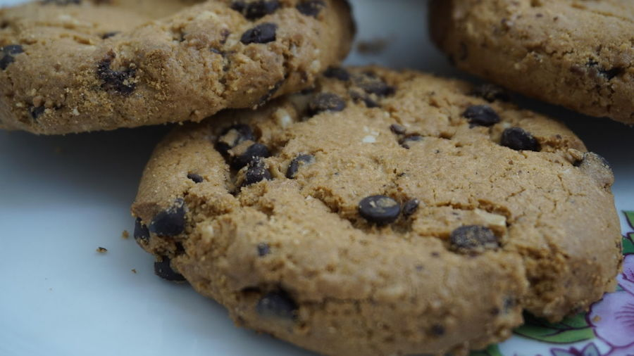Close-up of chocolate chip cookies served in plate