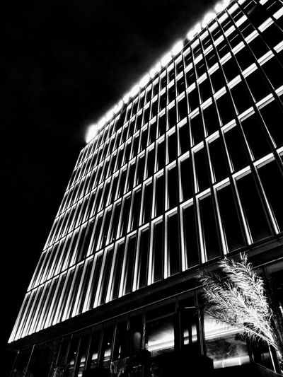 Deutsches House Curtain Wall Façade Black & White Black And White Blackandwhite Night Nightphotography Architecture Sky Built Structure Office Building High Rise Skyscraper Urban Skyline Cityscape Architectural Detail Tall - High Building Skyline Tower Financial District  The Architect - 2018 EyeEm Awards