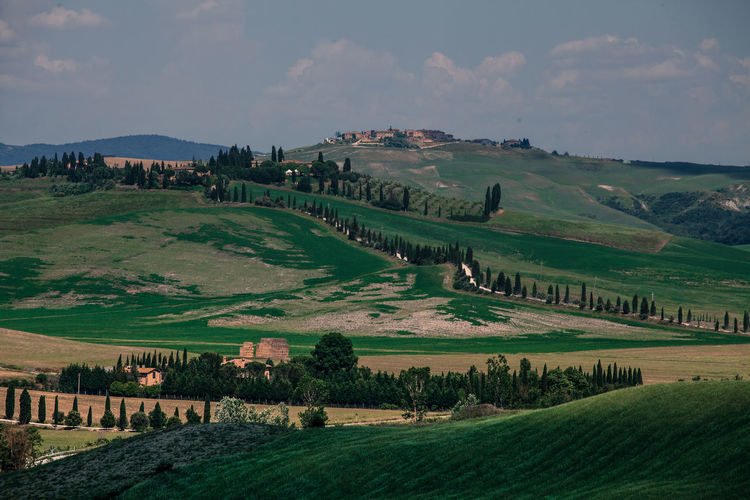 Val D'Orcia, Tuscany, Italy. Travelling through the countryside. Beauty In Nature Country Countryside Cypress Cypress Trees  Cypresshill Field Hills Hillside Italy Landscape Landscapes With WhiteWall Nature Tranquility Travel Travel Photography Traveling Travelphotography Tuscany Tuscany Countryside Tuscany Italy Tuscanygram Val D'orcia