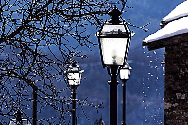 Where Do You Swarm? Snow Lago del Salto Lazio Rieti
