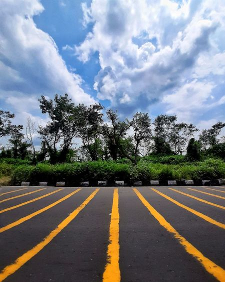 Surface level of road by trees against sky