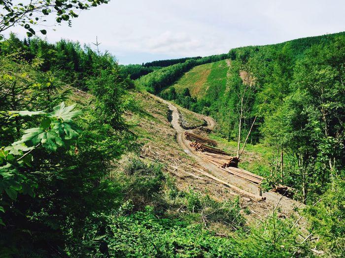Trailrunning Traildesfantomes Belgium