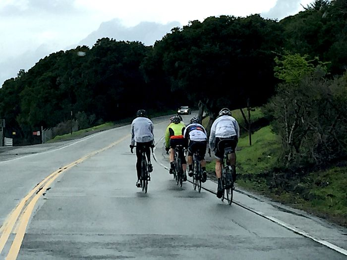 Group of bike riders on a San Francisco Bay Area road Bicycle Bicyclists Biking California Cycling Day Editorial  Group Leisure Activity Mode Of Transport Overcast Real People Riding Transportation