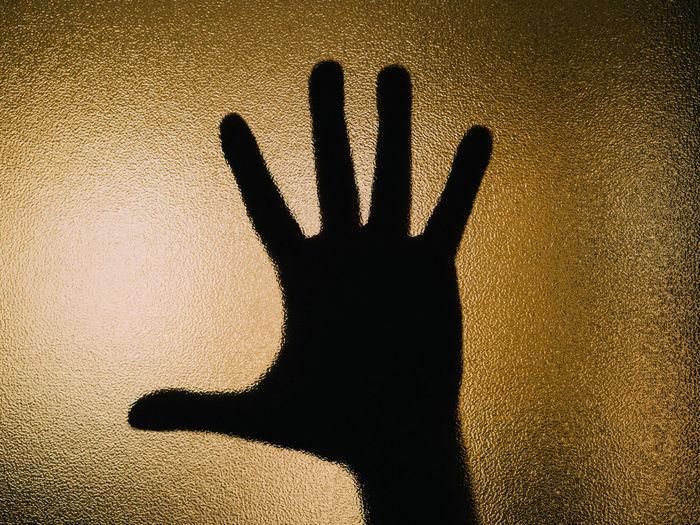 cinco dedos y