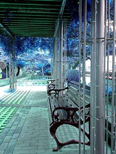 Bule world. Bule Bule Bule Color Palette Color Palette Park Bench Stremzoofamily Memories Blue Hour Blue Steel TowerLC Blue Forest MEMORY1