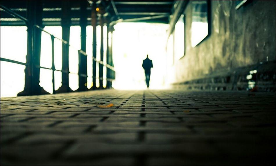 Walking Around Alone Nikon
