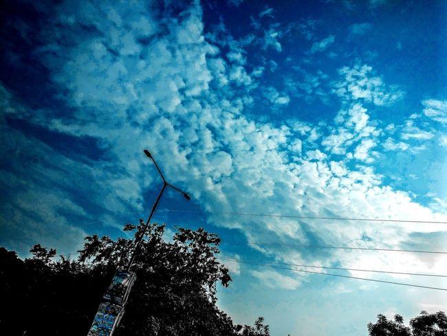 sky Sky Photography Nature Bird Tree Water Blue Silhouette Sky Cloud - Sky