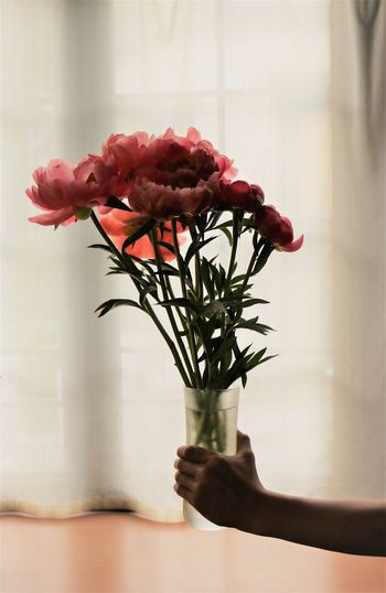 Close-Up Of Person Holding Flowers In Vase Against Window