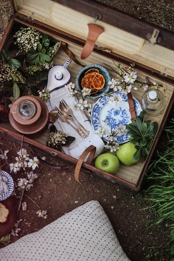 High angle view of fruits with plants and plates in box
