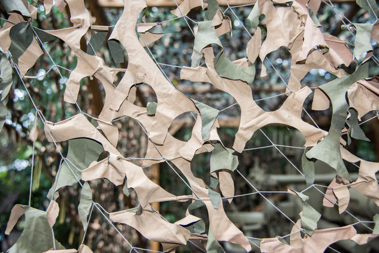 Full frame of military khaki tan and green camouflage netting in outdoor setting Backgrounds Close-up Outdoors Camouflage Net Netting Khaki Tan Green Color Camo Military Two-tone Full Frame Textured  Fabric Material Manmade Hiding Hidden Equipment Safety Precaution Beige Pattern Design