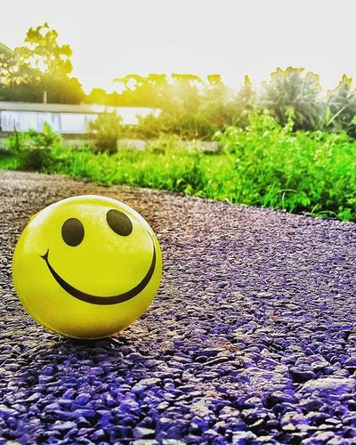 Happy morning all, happy Sunday !! Smile Happiness Click Nature Withbrother Happiness Love Instagood Instalife Instalove Instamorning