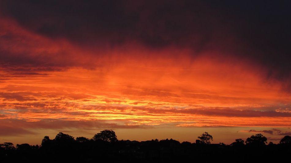SinCity Sunset_collection Sunset Beautiful