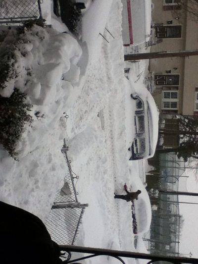 Snow ⛄❄❄❄⛄
