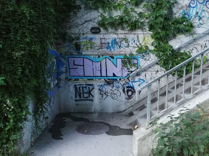 Graffiti Day Tree Outdoors Architecture Built Structure No People Growth Plant Water Nature The Street Photographer - 2017 EyeEm Awards