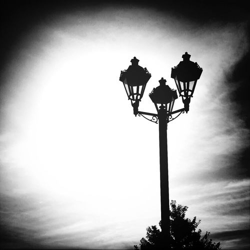 Lamp Post Black & White Everythings Better In Black And White