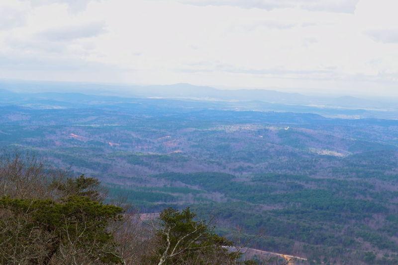Mt. Cheaha State Park, Alabama Alabama Alabama Outdoors Alabama Parks Beauty In Nature Cloud - Sky Day Horizon Over Land Landscape Mountain Mountain Range Mt. Cheaha Nature Outdoor Alabama Outdoor Photography Outdoors Scenics Tree in Mt.Cheaha , Alabama