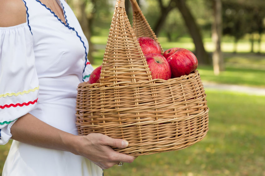 woman is holding red apples in a wicker basket Agriculture Apple Diet Family Rustic Vegetarian Apples Basket Food Girl Harvest Healthy Eating Healthy Food Organic Red Apple Ripe Straw Harvesting Organic Farm Plantation Farm Worker Agricultural Field Cultivated Cultivated Land Homegrown Produce Wicker Juicy Farmer Farmland Crop