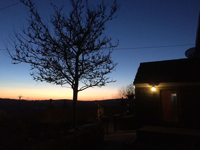 Winter sunset at The Royal Oak. Building Exterior Plant Architecture Built Structure Silhouette No People Night Clear Sky Outdoors Dusk Nature