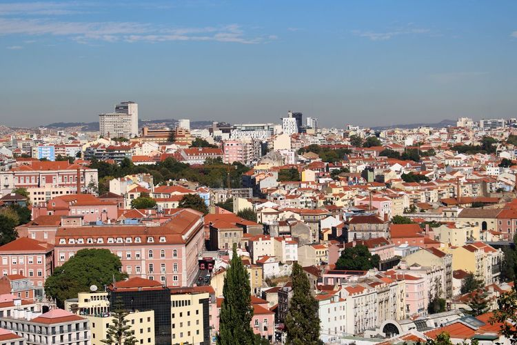 Adapted To The City Architecture Building Building Exterior Buildings Built Structure City City View  Cityscape Cityscapes Day Exceptional Photographs Green Color Growth Lisbon Lisbon - Portugal No People Outdoors Roof Sky Sky And Clouds Travel Destinations Tree Trees Urban Skyline